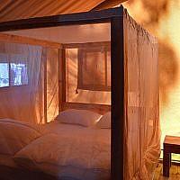 Slapen in een safaritent